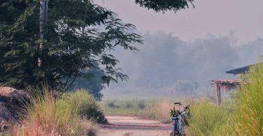 droga-dojazdowa-rower